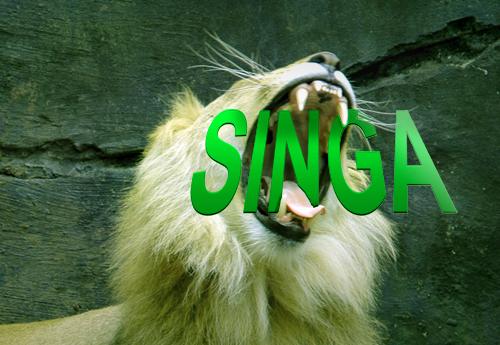 Singa!!